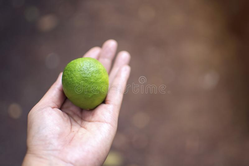 Asian woman holding a green lemon on a bokeh of ground stock photos