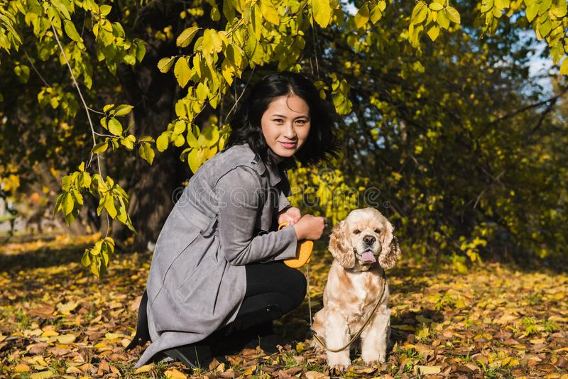 Asian woman play with dog in autumn park royalty free stock photography