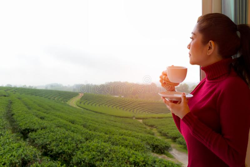 Asian woman put red sweater fresh morning drinking hot tea and looking out the window for see Tea farm on sunny day. Lifestyle Concept stock photo