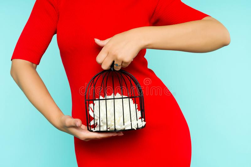 Asian woman in red dress holding a bird cage with a flower inside on blue background stock photography