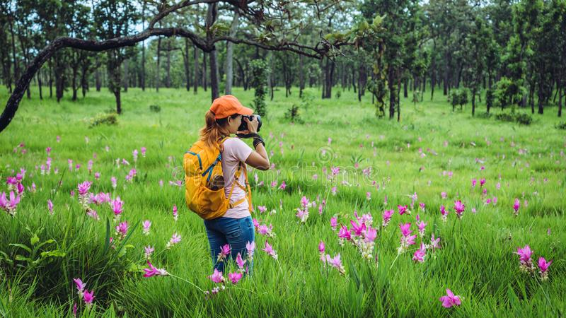 Asian woman travel nature. Travel relax. Photography Cucumber sessilis flower field. Travel nature in the holiday stock images