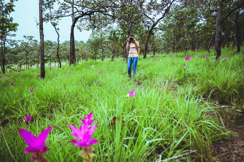 Asian woman travel nature. Travel relax. Photography Cucumber sessilis flower field.  royalty free stock photos