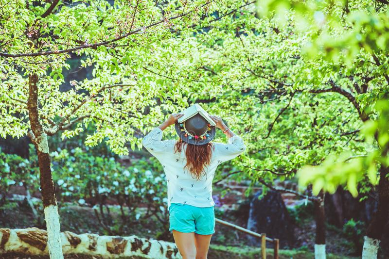 Asian woman travel nature. Travel relax. Reading book On the in the park. in summer. Education stock photo