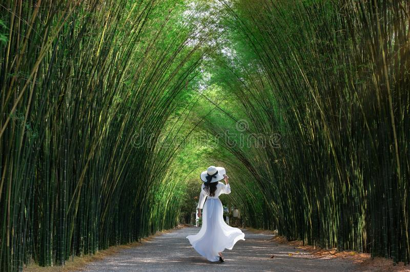 Asian woman traveler at green bamboo tunnel at Chulabhorn wanaram temple is a tourist attraction of the Nakhon Nayok Province,. Thailand stock image