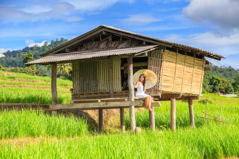 Asian woman wear traditional costume sitting in terrace rice farm with countryside background at Pa Pong Pieng Village royalty free stock photography