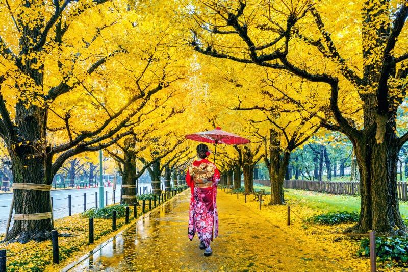 Asian woman wearing japanese traditional kimono at row of yellow ginkgo tree in autumn. Autumn park in Tokyo, Japan. Asian woman wearing japanese traditional stock image