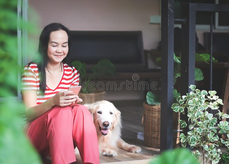 Asian woman wearing red stripe t-shirt  sitting in terrace with golden retriever dog lying beside reading message in mobile phone. And smiling happily.stay home royalty free stock photos