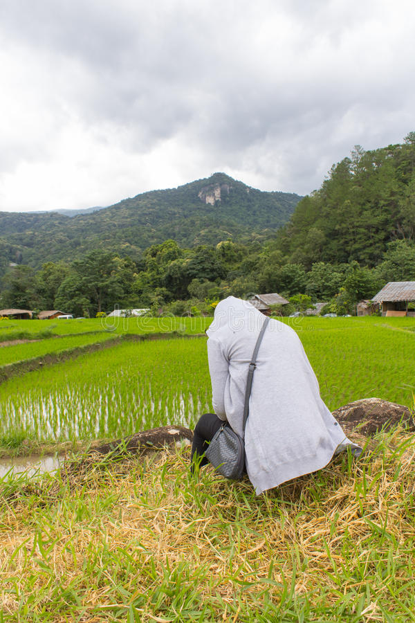 Asian women lonely at green terraced rice field, Mae Klang Luang Chiang Mai Thailand stock images