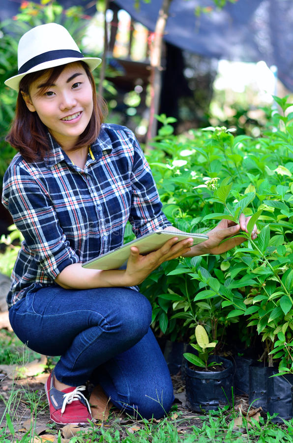 Asian women to potted plants. Asian woman to potted plants with computer tablet stock photo