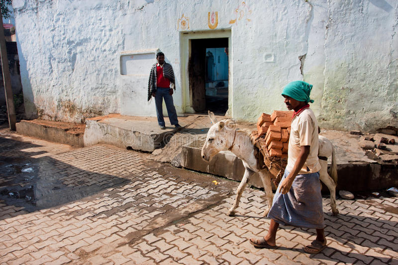 Asian worker leads a donkey laden with bricks royalty free stock photography