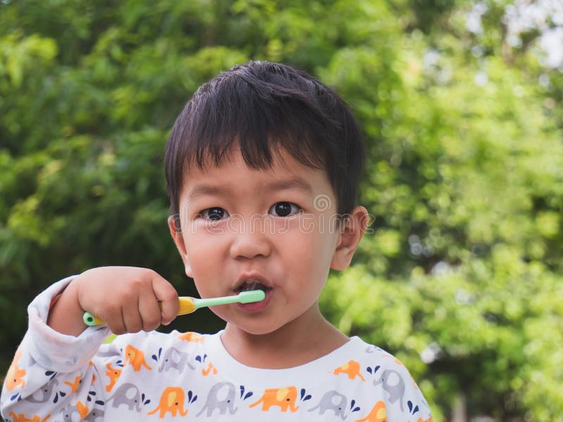 Asian young kid brush teeth royalty free stock photography