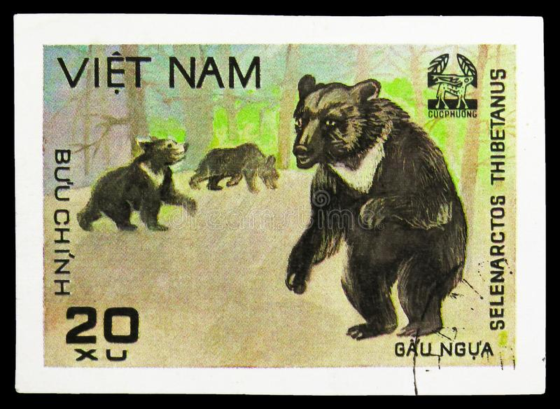 Asiatic Black Bear (Ursus thibetanus), Animals from Cuc Phuona Nati Forest serie, circa 1981. MOSCOW, RUSSIA - SEPTEMBER 26, 2018: A stamp printed in Vietnam royalty free stock photography