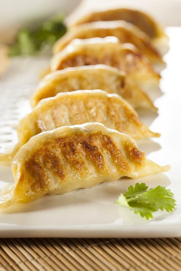 Asiatico casalingo Vegeterian Potstickers immagine stock