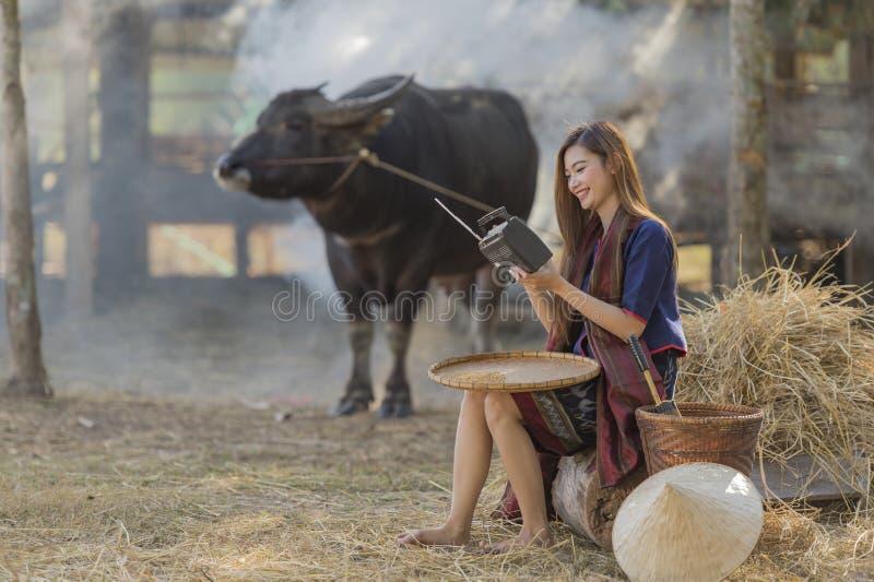 Asiatin, die traditionelle thailändische Kultur, auf dem Gebiet, hörendem Radio der Weinleseart auf Büffel und Bauernhofhintergru stockfoto