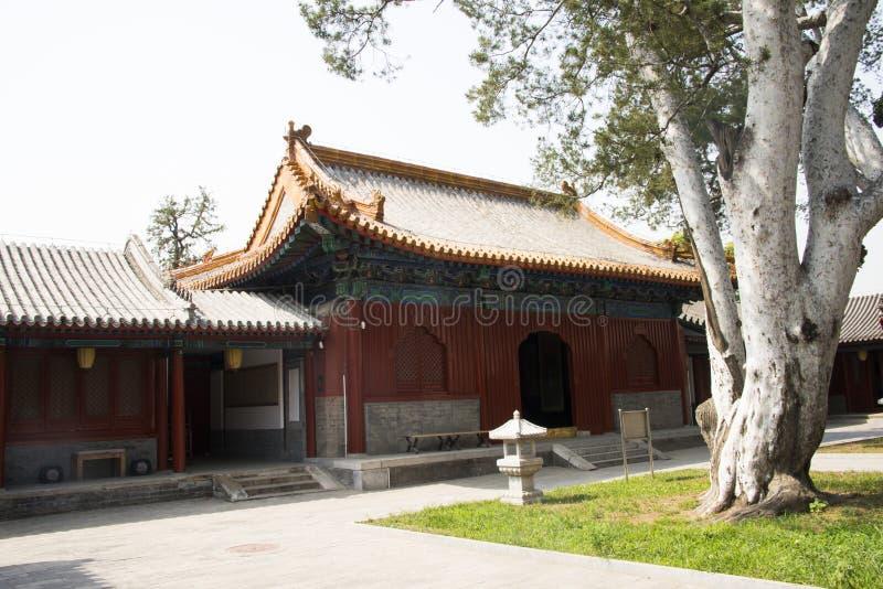 Asiatique Chine, Pékin, parc de temple de Fahai, architecture antique, pin blanc photographie stock
