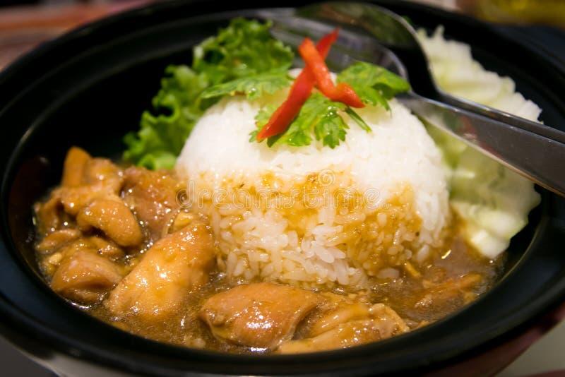 Asiatische Art Hainan-Huhnreisnahaufnahme stockbild