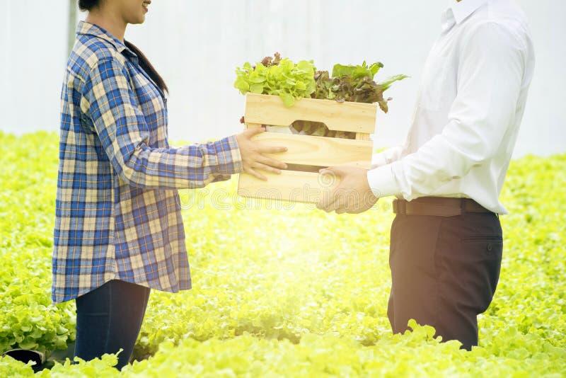 Asiatische Bauern geben Holzkiste und verkaufen frisches Bio-Hydrophon-Gemüse an junge asiatische Kundin in stockbilder