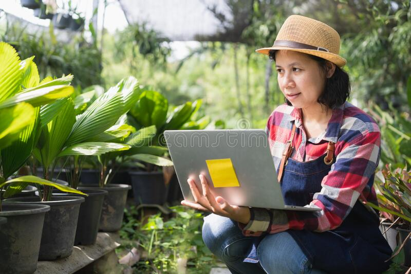 Asiatische Frau benutzt einen Laptop, um die Vegetation in der Zierpflanzenwerkstatt zu überprüfen, Konzept für kleine Unternehme stockbild