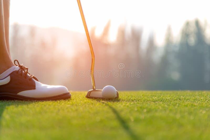 Asiatische Frau des Golfspielers, die Golfball auf das grüne Golf auf gesetzter Abendzeit der Sonne setzt stockbild