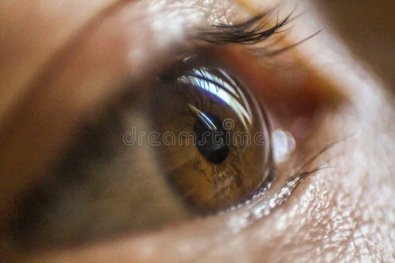Asiatische M?dchenaugennahaufnahme gerichtet auf die flache Sch?rfentiefe der Iris stockbilder