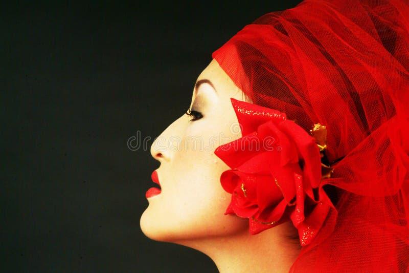 Asiatische Schönheit stockbild