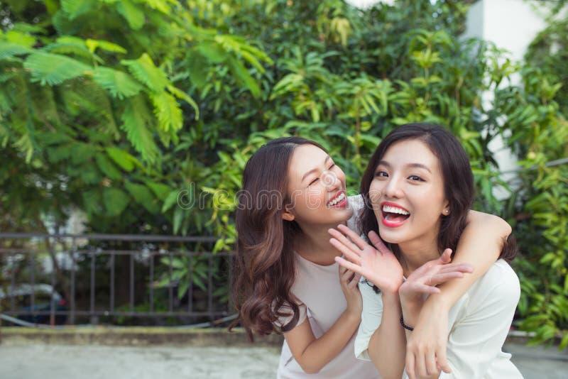 Asiatische Schwestern, die im Park umarmen und lächeln lizenzfreie stockfotos