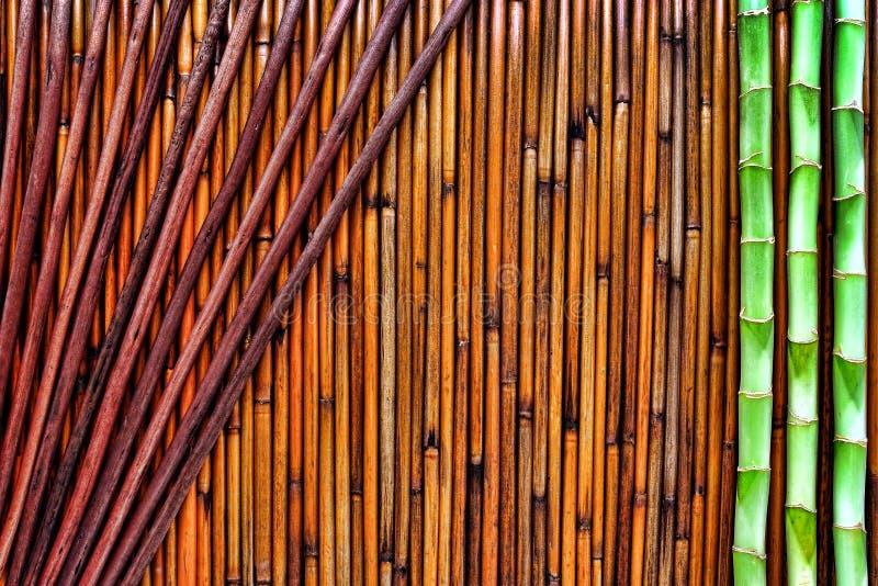 Asiatischer Bambushintergrund stockbild