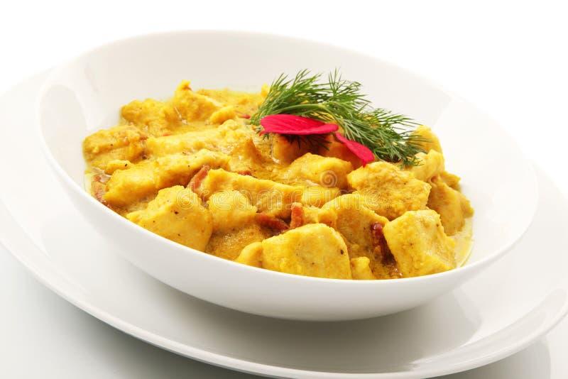 Asiatischer Curry Hühnerteller lizenzfreie stockfotos