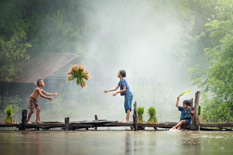 Asiatischer Kinderlandwirt auf Reiskreuz die hölzerne Brücke vor dem g stockbild