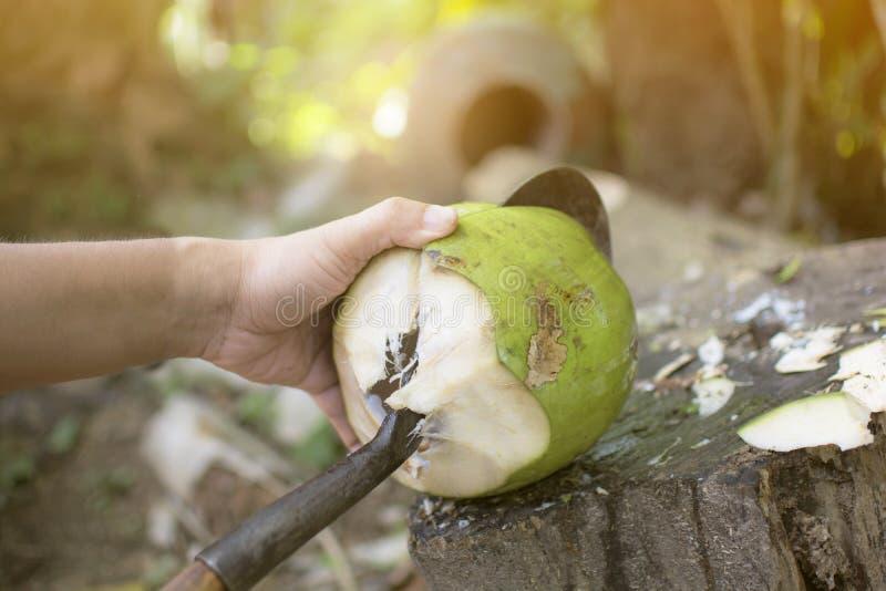 Asiatischer Mann, der das schwere Hiebmesser zur Schale und zum Schälen einer grünen frischen Kokosnuss mit bokeh Baumhintergru stockfotos