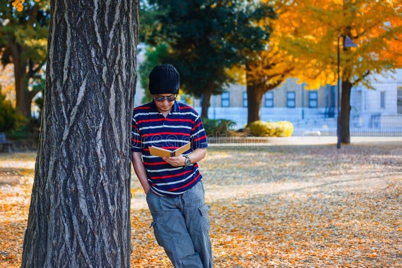 Asiatischer Mann steht unter einem gelben Ginkgo-Baum im Herbst stockfotografie