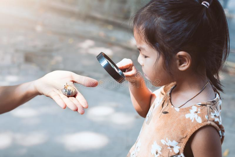Asiatisches Kindermädchen, das aufpassende Käferlarven der Lupe verwendet lizenzfreie stockfotografie
