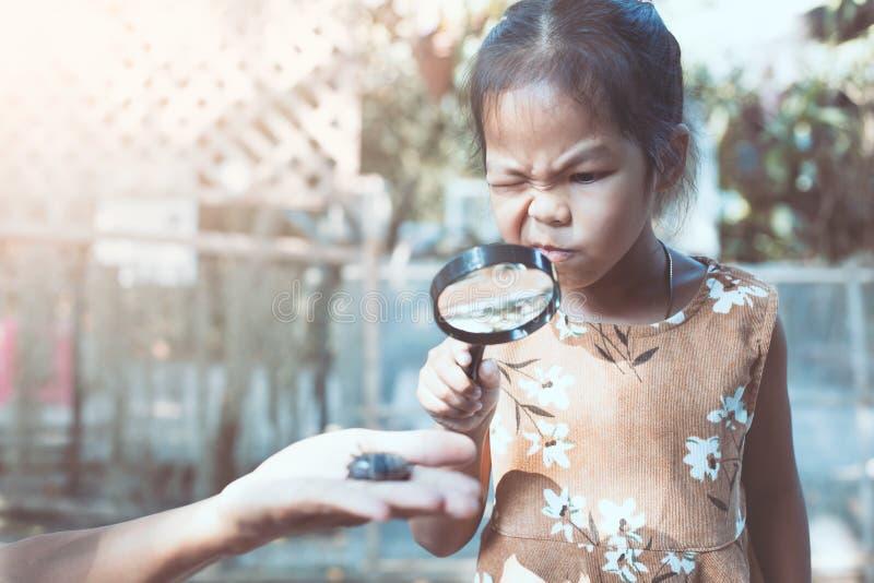 Asiatisches Kindermädchen, das aufpassende Käferlarven der Lupe verwendet lizenzfreie stockfotos