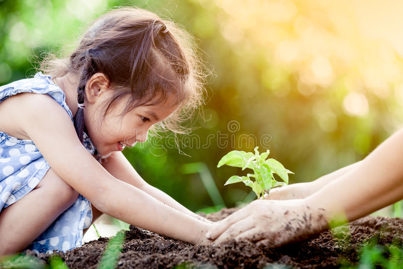 Asiatisches kleines Mädchen und Elternteil, die jungen Baum auf schwarzem Boden pflanzt stockfotografie