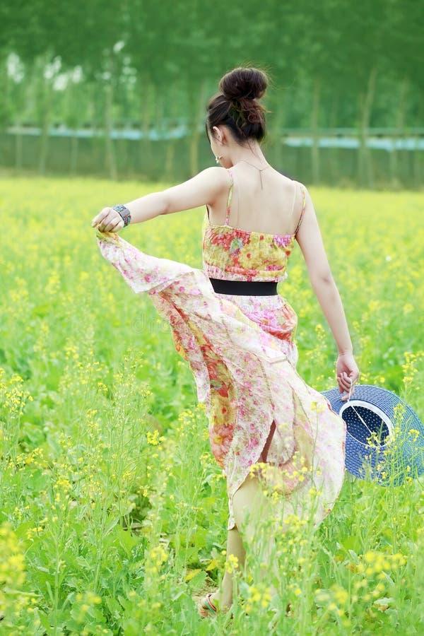 Asiatisches Mädchen, das auf dem Rapsgebiet schlendert stockbild