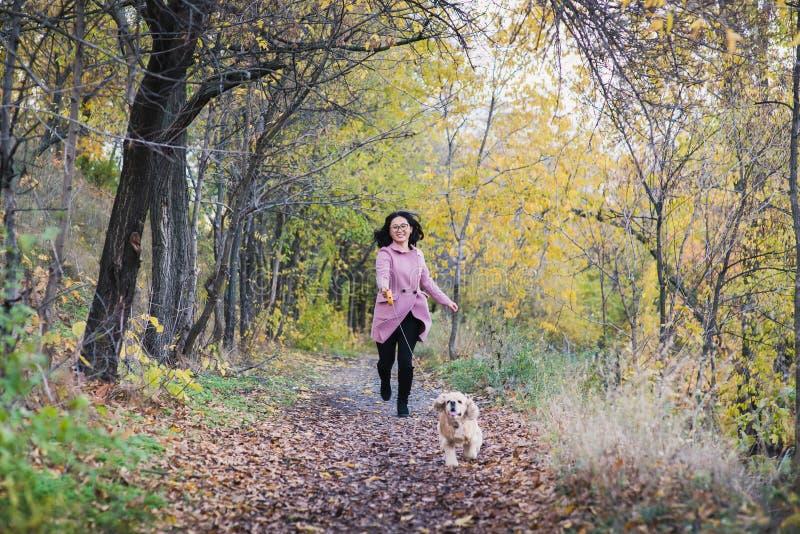 Asiatisches Mädchen, das mit ihrem Hund im Park geht stockfotos