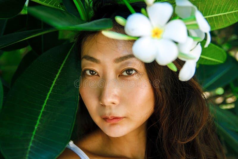 Asiatisches Schönheitsgesichts-Nahaufnahmeporträt mit sauberer Haut, frische elegante Dame stockfotos