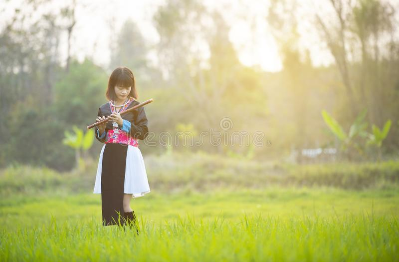 Asiatisk damflicka för stam i beställnings- flöjt för klänninghandhåll med den lyckliga framsidan som går i risfält i monsunperio arkivfoton