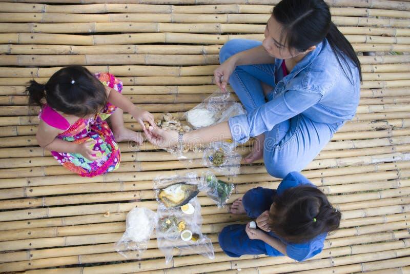Asiatisk familj som har picknicken utomhus royaltyfri bild