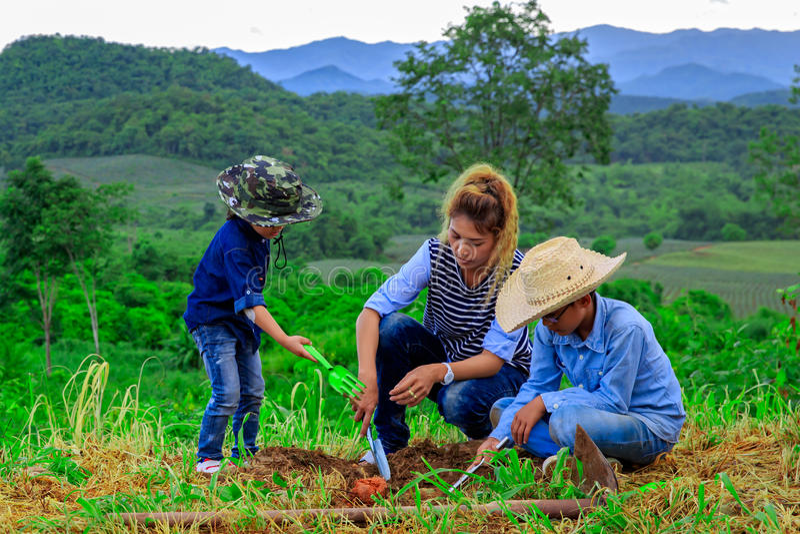 Asiatisk familj som tillsammans planterar trädet royaltyfri fotografi