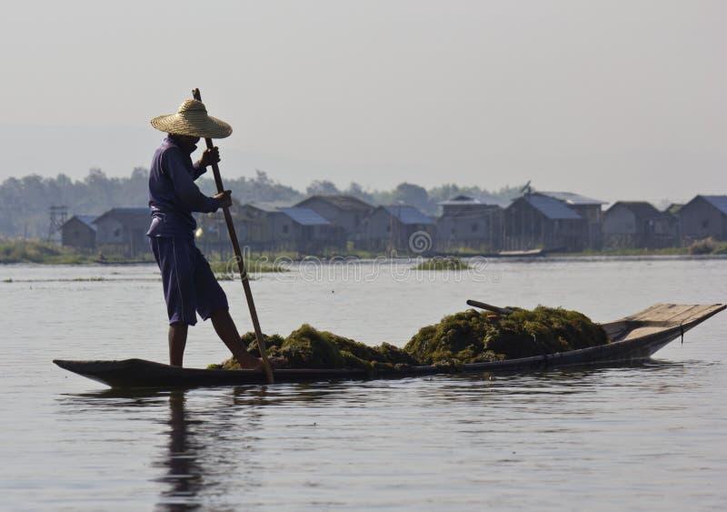 Asiatisk fiskare på Inle sjön arkivbilder