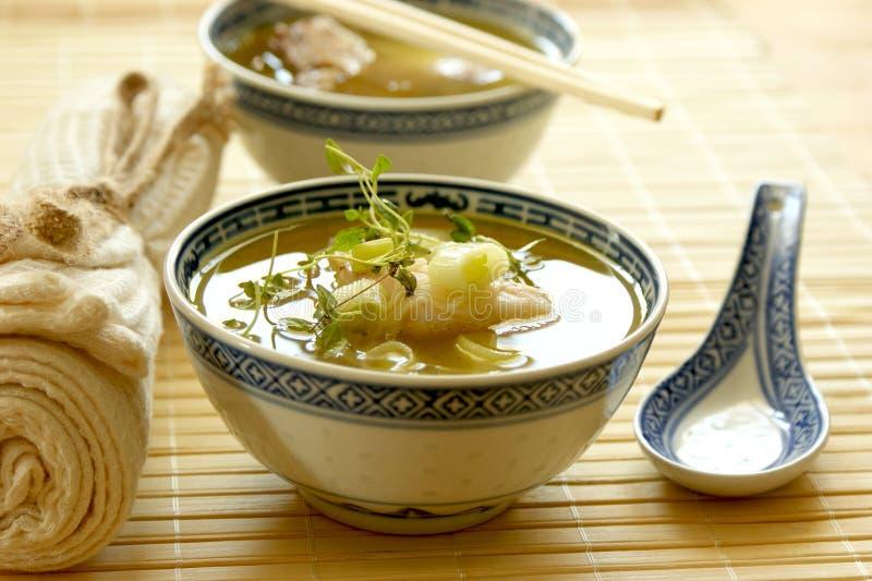 asiatisk fisknudelsoup royaltyfri bild