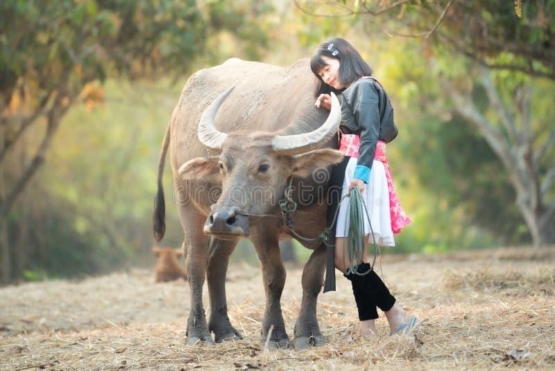 Asiatisk kvinna i stamklänning med vattenbuffeln i lantgården, kamratskapbegrepp arkivbilder
