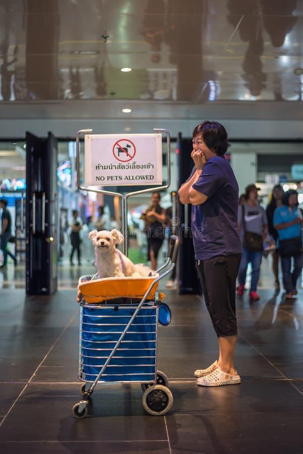 Asiatisk kvinna och hunden med tecknet inga tillåtna husdjur arkivbild