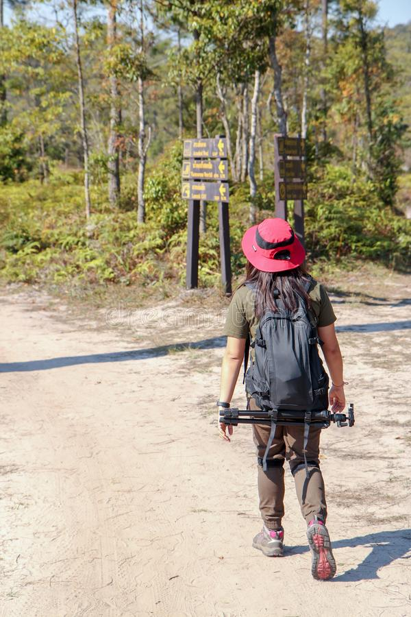 Asiatisk kvinnahandelsresande med ryggsäckinnehavhatten på berg och den tropiska skogen, fotografdet fria i naturen, loppferie royaltyfri bild
