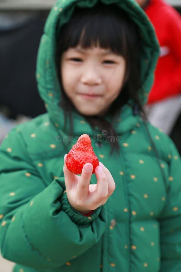 Asiatisk liten flicka som är lycklig med jordgubbeavsmakning som är ny i jordgubbelantgård, lopp till Korea arkivfoton
