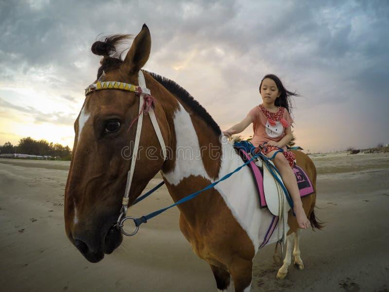 Asiatisk liten flicka som rider en häst på stranden i aftonen, solnedgång med en flicka på hästrygg, lopp i Hua Hin, Prachuap Khi arkivbild