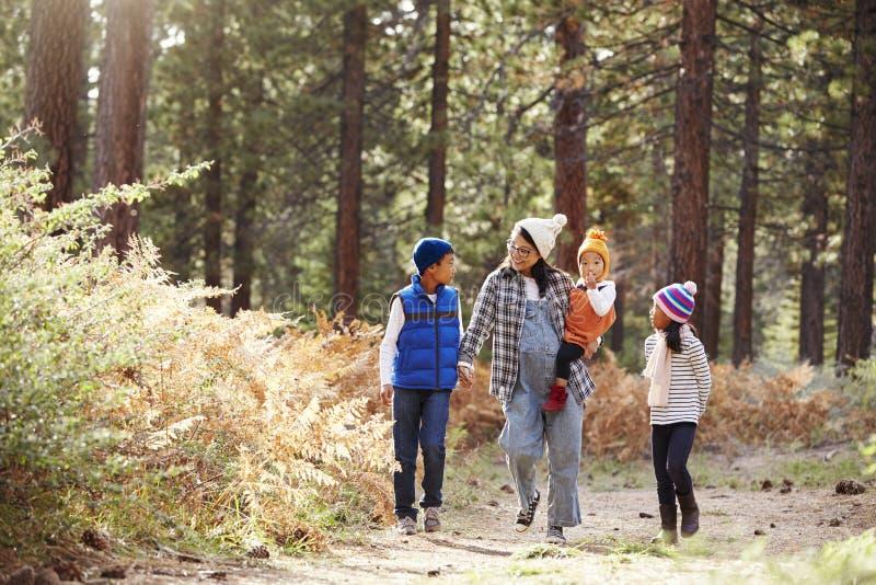 Asiatisk moder med tre barn som går i en skog royaltyfria foton