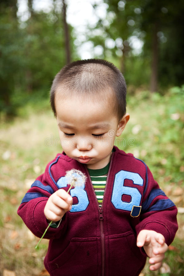asiatisk pojke royaltyfri fotografi