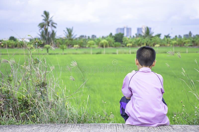 Asiatisk pojke som rymmer en telefon och sitter på gatabakgrunden de gröna risfälten royaltyfria foton